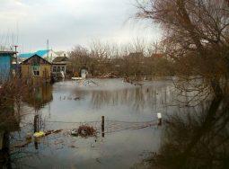 108 клиентов из Волгоградской области обратились в РОСГОССТРАХ из-за паводка