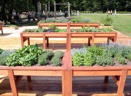 Сенсорный сад Волгограда