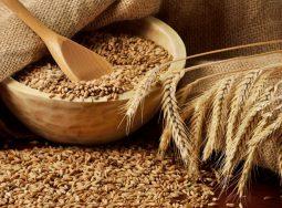 Растут поставки волгоградского зерна