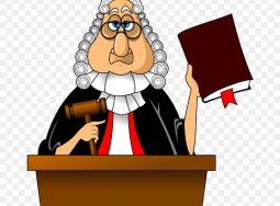 Как «физик» стал «юриком»  или о том, как Верховный суд заставил физическое лицо заплатить НДС с аренды помещения