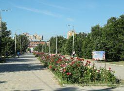 Завершён конкурс на благоустройство парка Гагарина