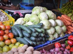 В Волгоградской области в полтора раза выросло производство тепличных овощей