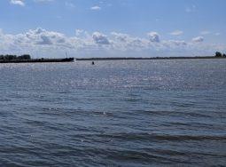 Волгоградская область — в пятерке лучших мест для рыбалки в России