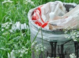 Стартовал квест по спасению городов от мусора