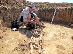 Волгоградские археологи обнаружили артефакты раннесарматской культуры