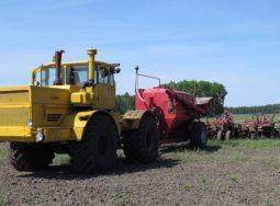 В Волгоградской области идет сев технических культур